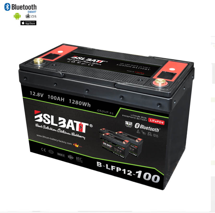 【New】100 Ah 12 V LiFePO4 Deep Cycle Battery