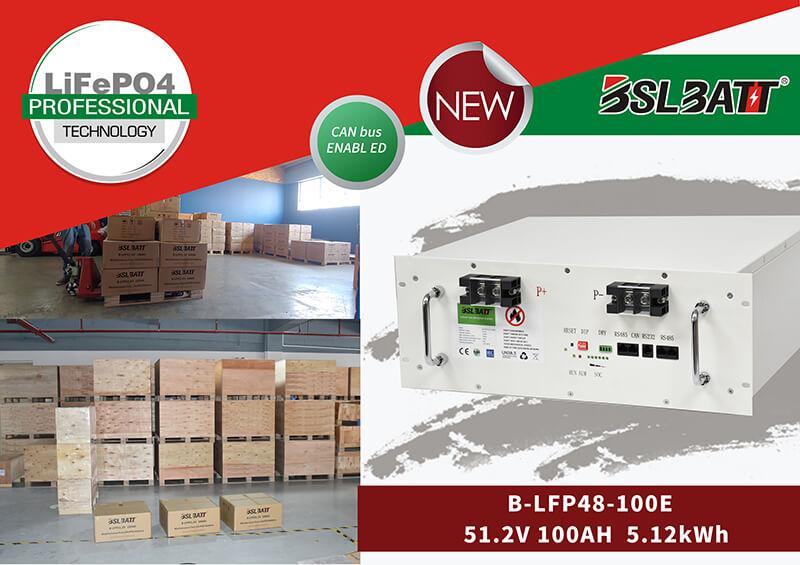 48V LiFePO4 Battery (2)