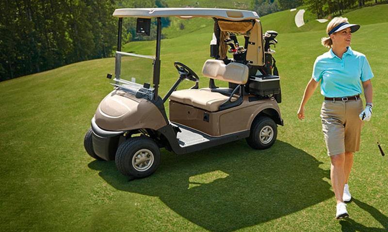 lifepo4 golf cart battery