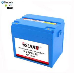 48V 25AH Deep Cycle Lithium Ion Battery